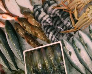 ⑧氷見海鮮市場